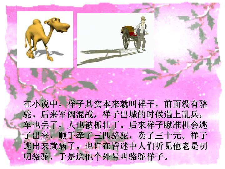 名著导读 骆驼祥子