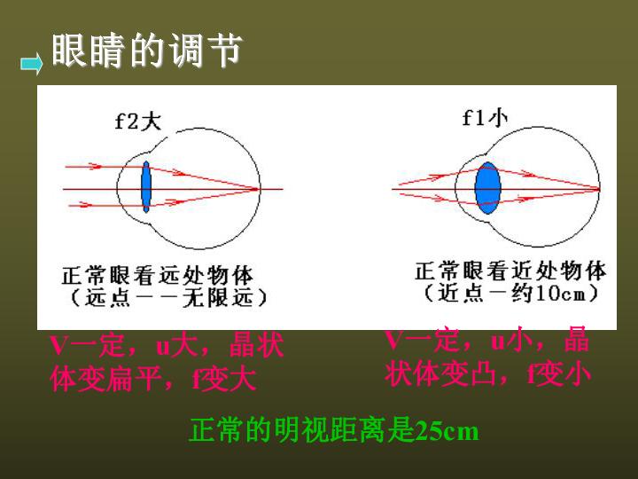 眼睛和照相机 成像的原理_照相机成像原理示意图