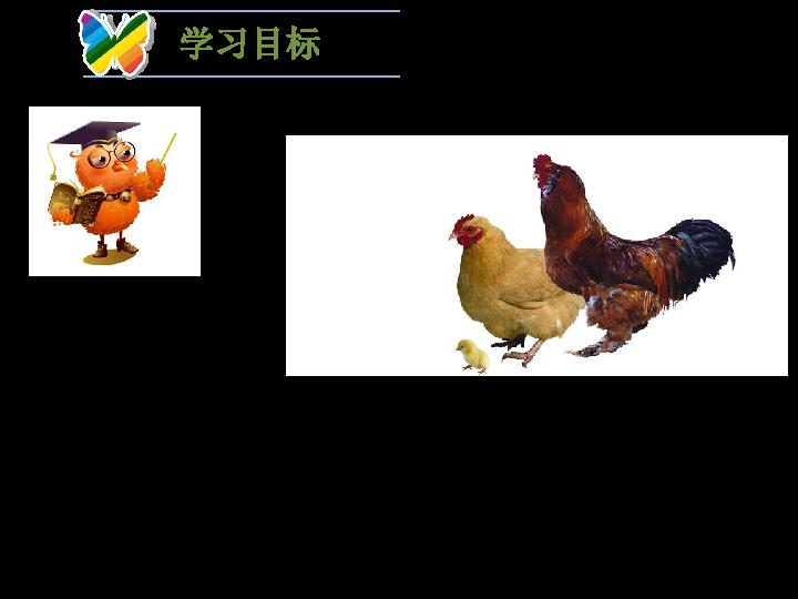 16.2 动物行为的主要类型 ppt课件 30张