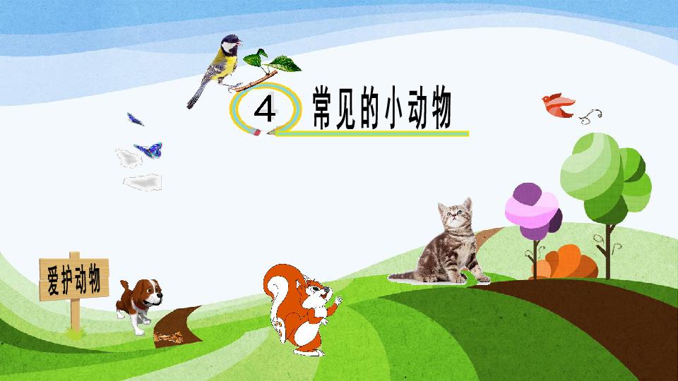 第二单元第4课 常见的动物