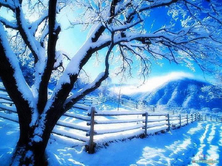 教版6.17 雪地里的小画家 课件图片