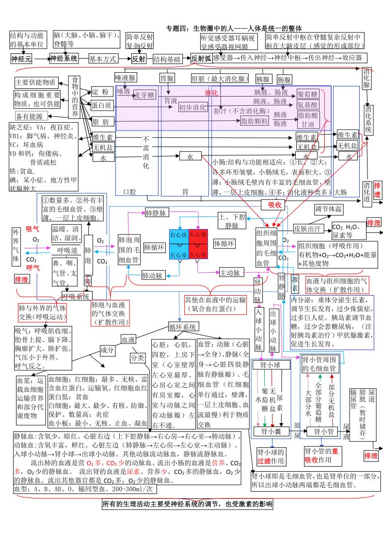 生物圈中的的人 思维导图( pdf格式)