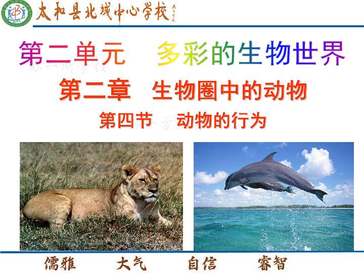 件2.2.4 动物的行为 19PPT